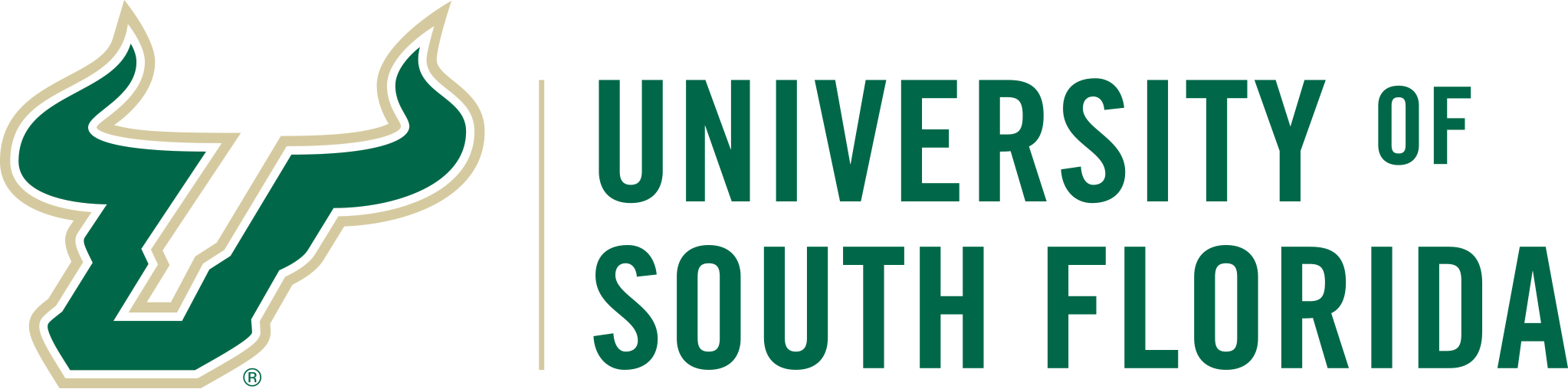 USF, University of South Florida